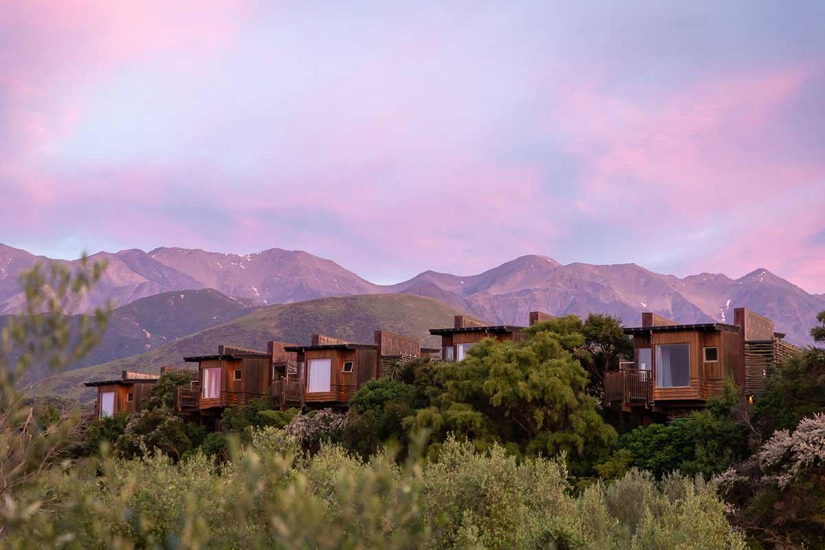 Luxury Hapuku Lodge and Tree House Escape