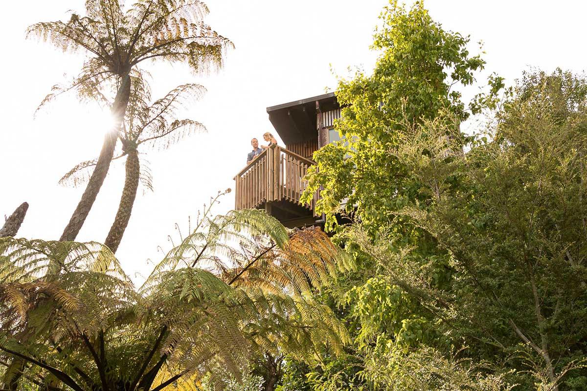 Directions Travel - Hapuku Lodge and Tree House